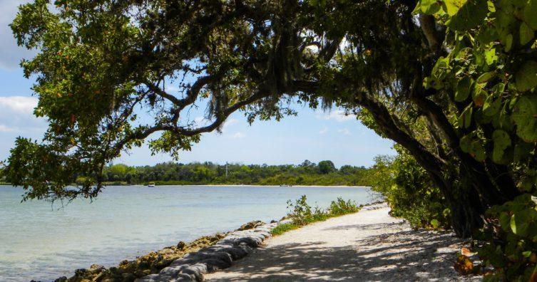 Clima en Bradenton, Florida: clima, estaciones y temperatura mensual promedio