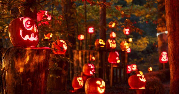 7 eventos gratuitos de Halloween en Louisville, Kentucky