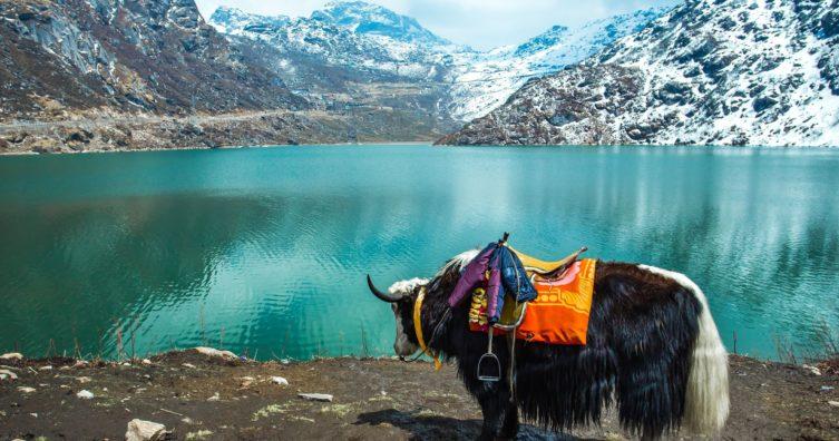 12 mejores cosas que hacer en Sikkim, India